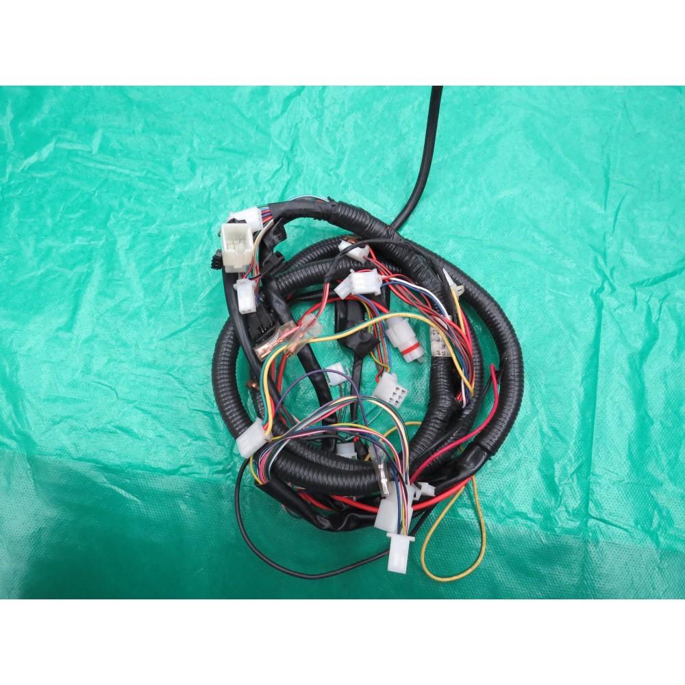 Arnes de cables principal (Mazo de cables)